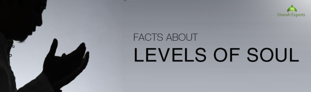 Important Facts About Levels of Soul